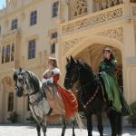 výcvik a drezura koní