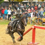 turnaj na koních